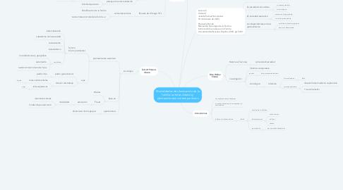 Mind Map: Modalidades de observación de la familia: autores clásicos y planteamientos contemporáneos