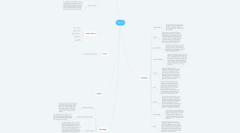 Mind Map: Spy 1.0