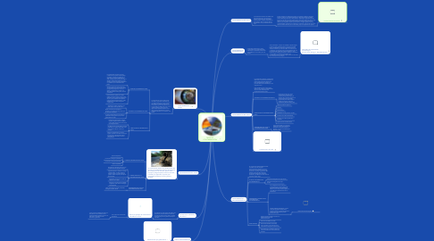 Mind Map: TIPOS DE  CONTAMINACIÓN