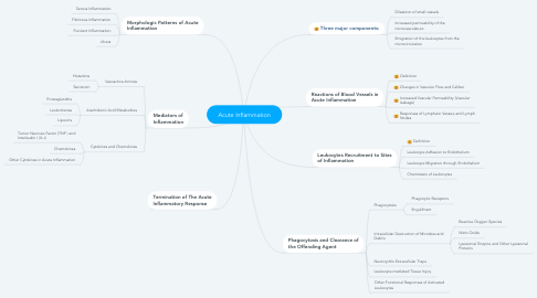 Mind Map: Acute Inflammation
