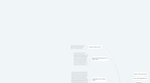 Mind Map: The Mako Shark