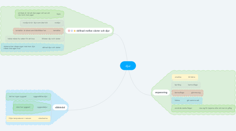 Mind Map: djur