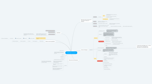 Mind Map: TERMORREGULACIÓN