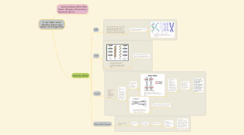 Mind Map: O que saber sobre Genética básica para aplicar na Nutrigenética