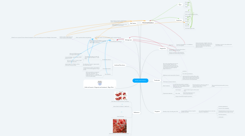 Mind Map: Sickle Cell Anemia