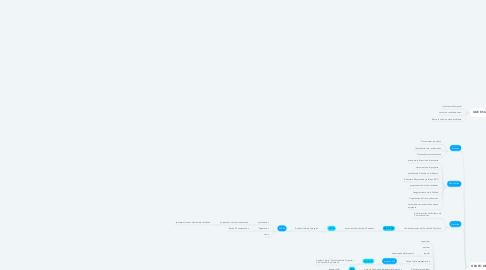 Mind Map: UNA METODOLOGIA PARA LA GESTION DE PROYECTOS DE AUDITORIA INFORMATICA BAJO EL ENFOQUE PMI