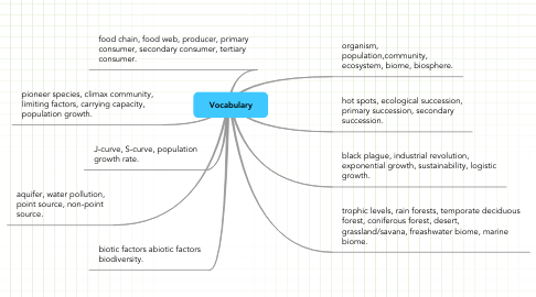 Mind Map: Vocabulary