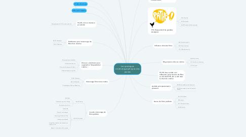 Mind Map: Les pratiques cinématographiques des jeunes