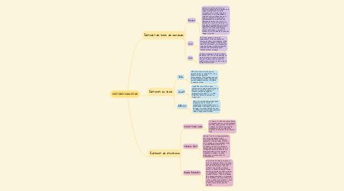 Mind Map: EDITORES PARA HTML