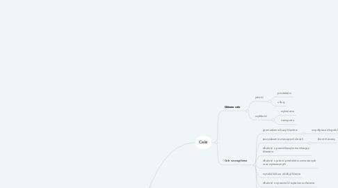 Mind Map: Cele i zamierzenia firmy