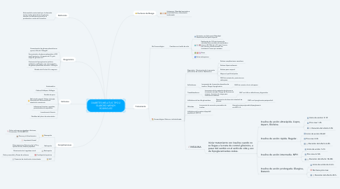 Mind Map: DIABETES MELLITUS TIPO 2 ELABORO WENDY RODRIGUEZ