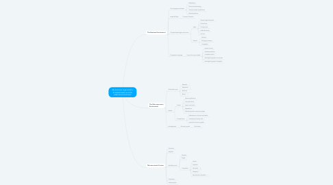 Mind Map: My business organisation, its stakeholders and the external environment