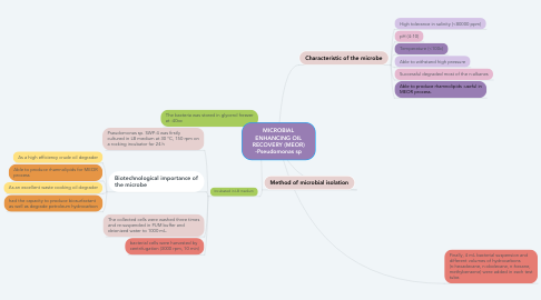 Mind Map: MICROBIAL ENHANCING OIL RECOVERY (MEOR) -Pseudomonas sp