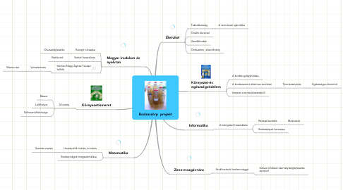 Mind Map: Bodzaszörp  projekt