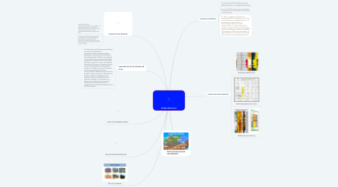 Mind Map: Perfiles Electricos