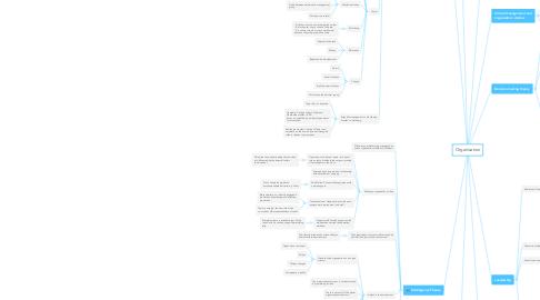 Mind Map: Organisation
