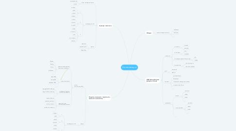 Mind Map: Бизнес-авиация