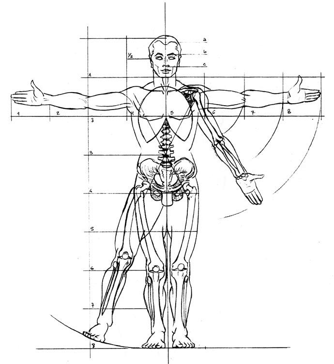 Estructura Corporal del Cuerpo Humano (例子) - MindMeister