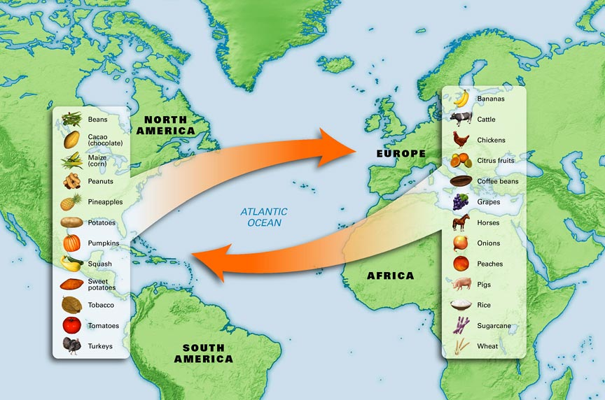 Columbian Exchange Diseases List