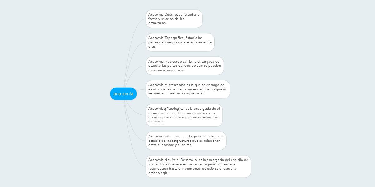 Lujo La Forma De Estudiar La Anatomía Modelo - Imágenes de Anatomía ...